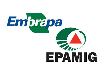 Reportagem InterTV- Pesquisa Epamig / Embrapa