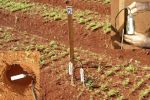 Instalação e utilização do Irrigas